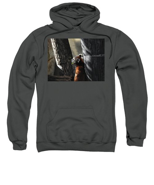 Dreaming Sweatshirt