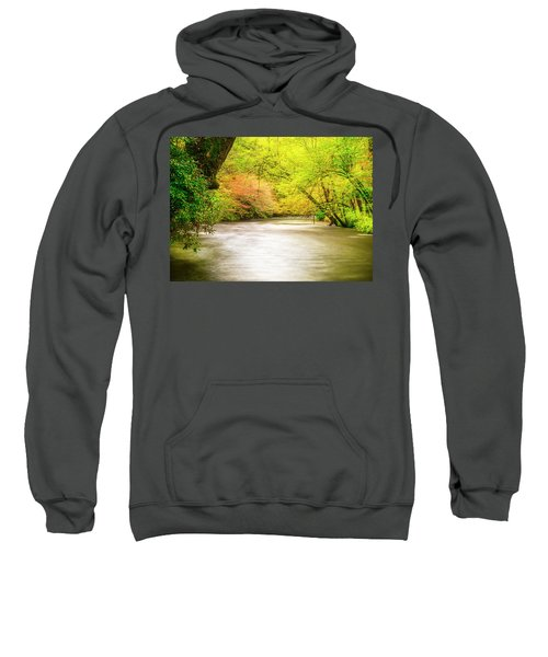 Dreamy Days Sweatshirt