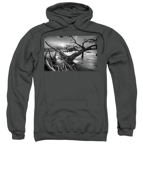 Driftwood Beach 8 Sweatshirt