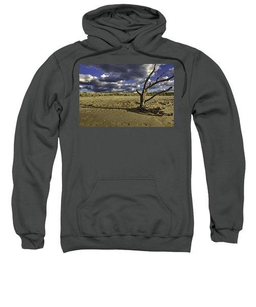 Driftwood II Sweatshirt