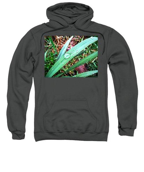 Droplets Sweatshirt