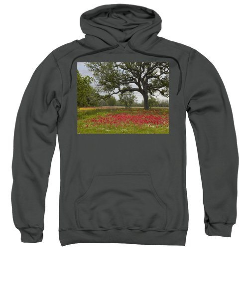 Drummonds Phlox Meadow Near Leming Texas Sweatshirt