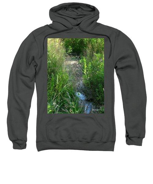 Dry Patch  Sweatshirt