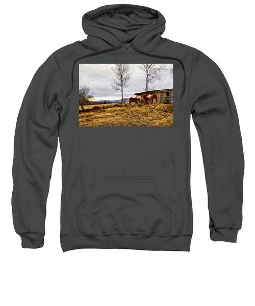 Dusk Feeding On The Farm Sweatshirt