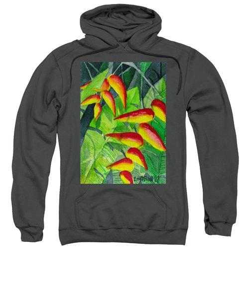 Dynamic Halakonia Sweatshirt