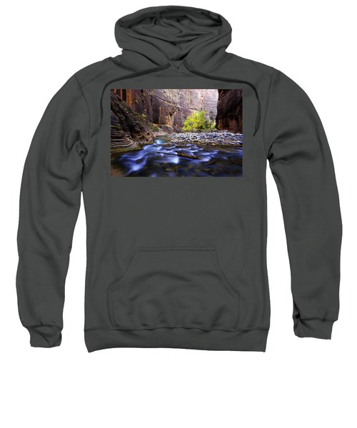 Dynamic Zion Sweatshirt