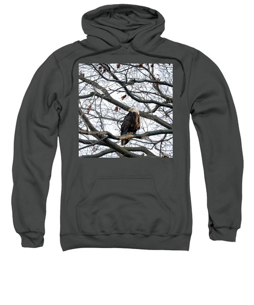 Eagel 0 Sweatshirt