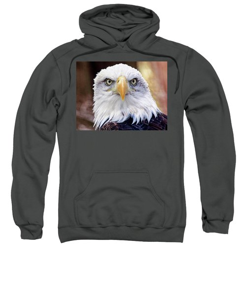 Eagle Eyes Sweatshirt