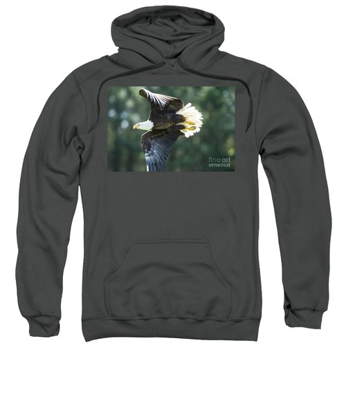 Eagle Flying 3005 Sweatshirt