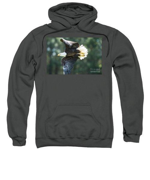 Eagle Flying 3005 Sweatshirt