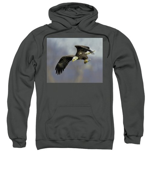 Eagle Power Dive Sweatshirt