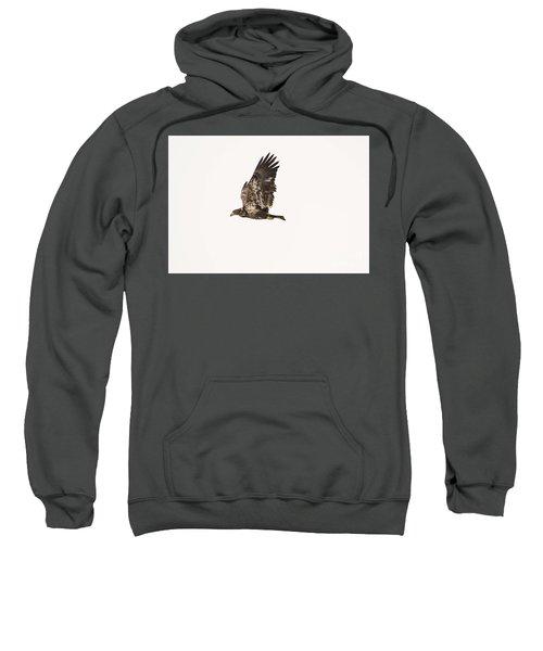 Eaglet On The Fox Sweatshirt