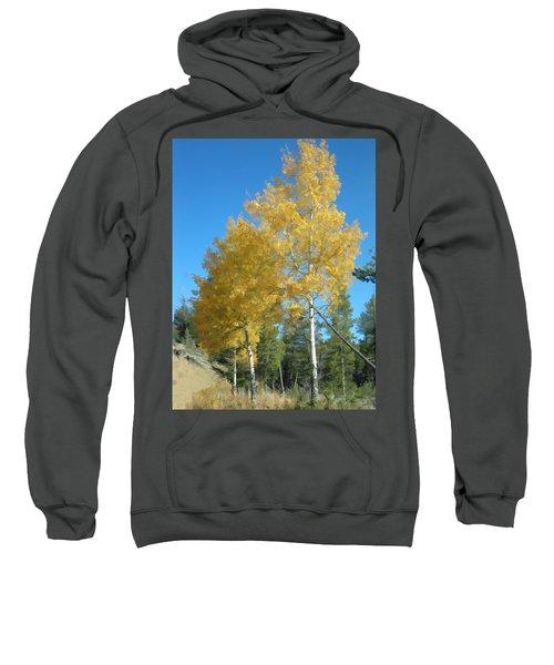 Early Autumn Aspens Sweatshirt