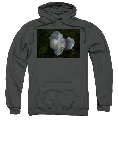 Early Morning Rose Sweatshirt