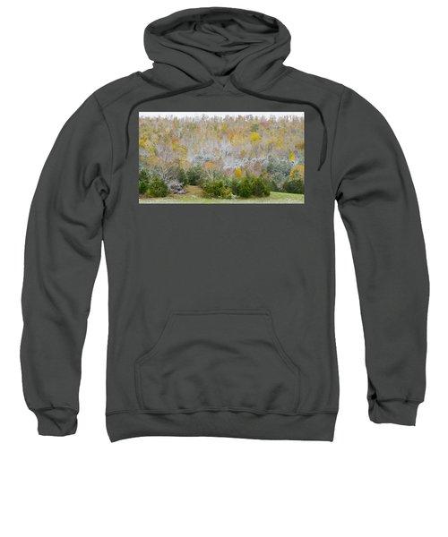 Early Snow Fall Sweatshirt