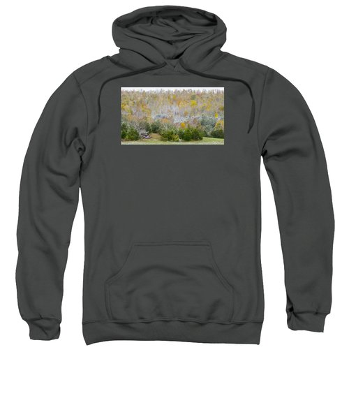 Early Snow Fall Sweatshirt