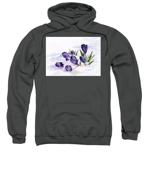 Early Spring In Montana Sweatshirt
