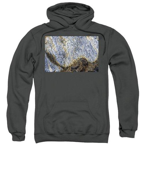 Earth Portrait 001-035 Sweatshirt
