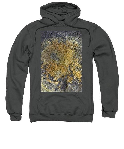 Earth Portrait 014 Sweatshirt