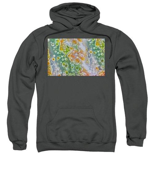 Earth Portrait 277 Sweatshirt