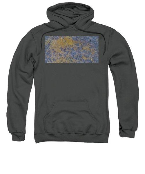 Earth Portrait L 2 Sweatshirt