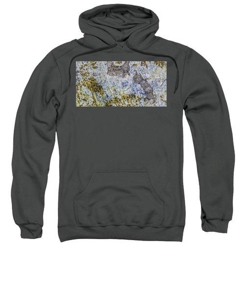 Earth Portrait L4 Sweatshirt