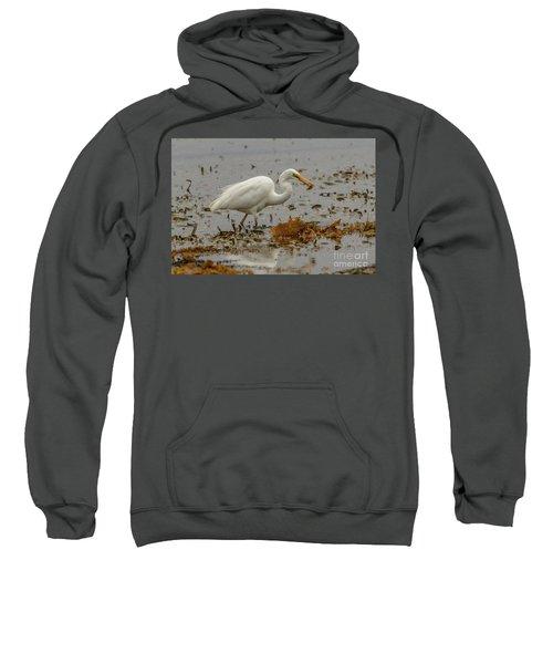 Eastern Great Egret 10 Sweatshirt