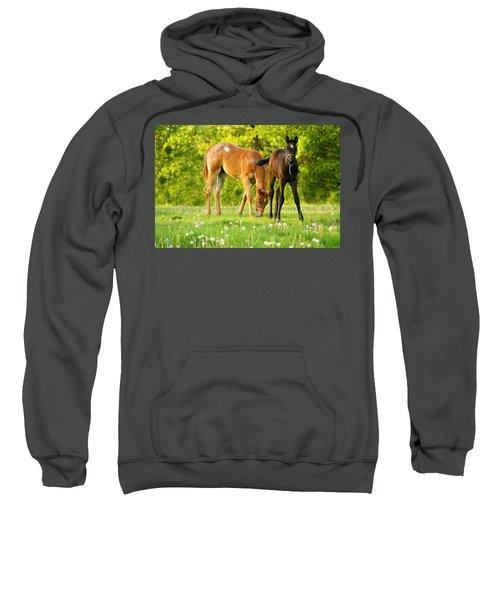 Easy Pickins Sweatshirt