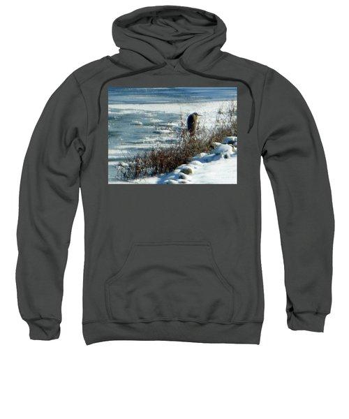 Egret Frozen Lake Sweatshirt