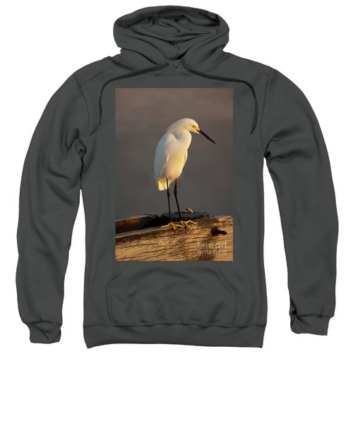 Egret Glow Sweatshirt