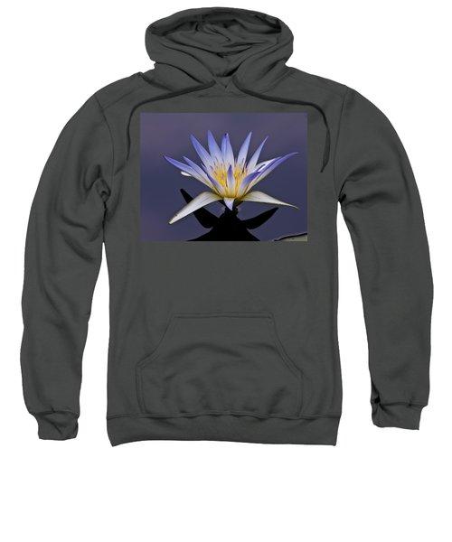 Egyptian Lotus Sweatshirt