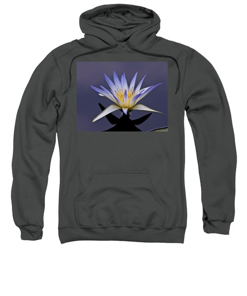 Egyptian Lotus Sweatshirt