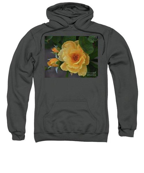 Elation Sweatshirt