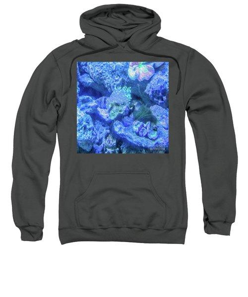 Electric Coral Sweatshirt