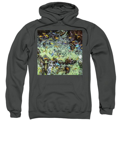 Electric Fish In The Pond Sweatshirt