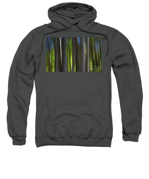 Electric Light  Sweatshirt