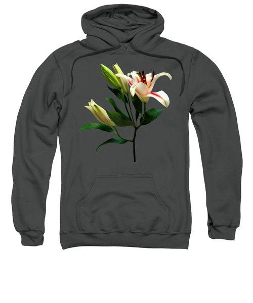 Elegant Lily And Buds Sweatshirt