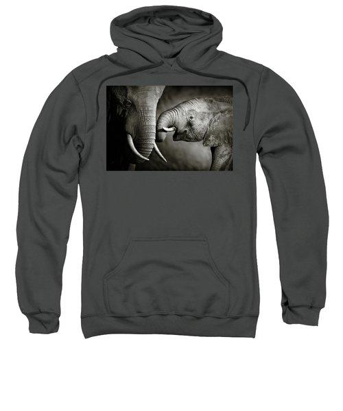 Elephant Affection Sweatshirt