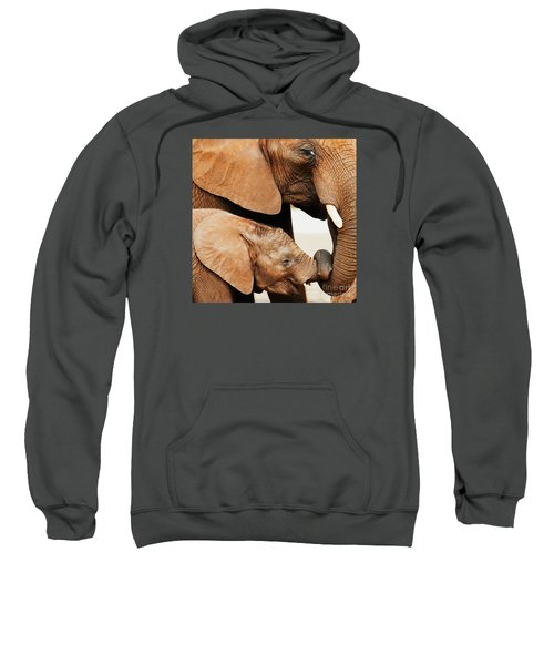 Elephant Calf And Mother Close Together Sweatshirt