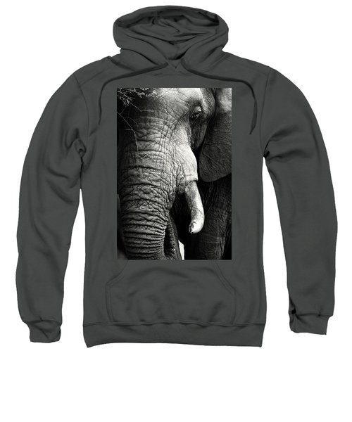 Elephant Close-up Portrait Sweatshirt