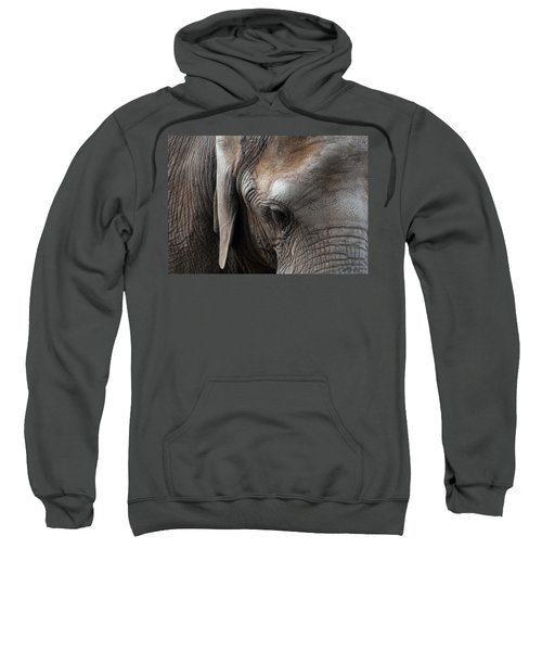 Elephant Eye Sweatshirt