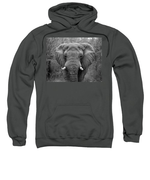 Elephant Eyes - Black And White Sweatshirt