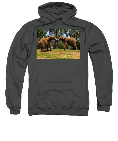 Elephant Play 3 Sweatshirt