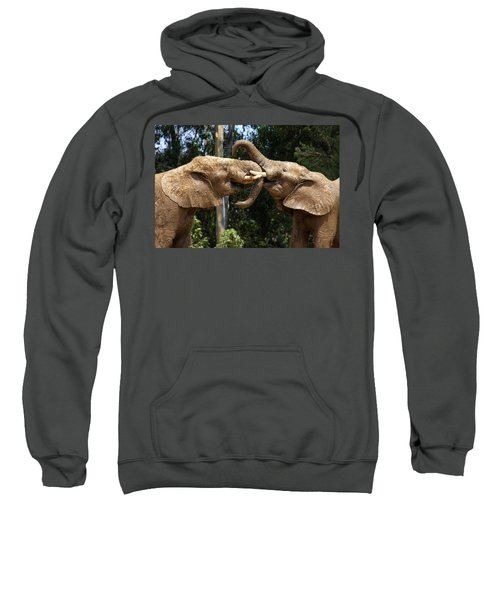 Elephant Play Sweatshirt