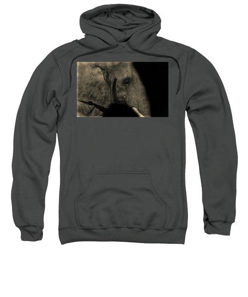 Elephant Portrait Sweatshirt