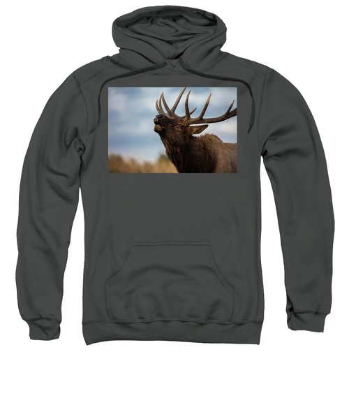 Elk's Screem Sweatshirt by Edgars Erglis