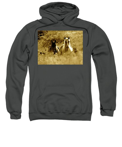 Emerging From The Farm Sweatshirt
