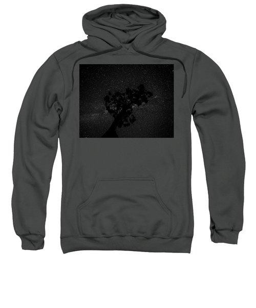 Empty Night Tree Sweatshirt