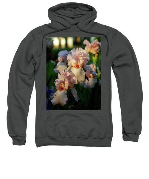 End Of Day Pink Irises 6702 H_2 Sweatshirt