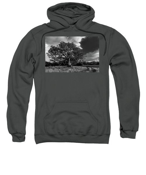 Engellman Oak Palomar Black And White Sweatshirt